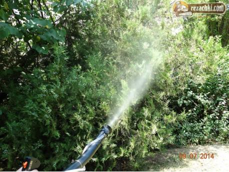 Моторна пръскачка Гардения - Gardenia 3WF-3 с джойстик-ръкохватка