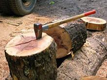 Инструменти за дървосекачи