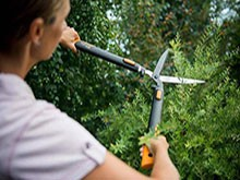Ножици за храсти